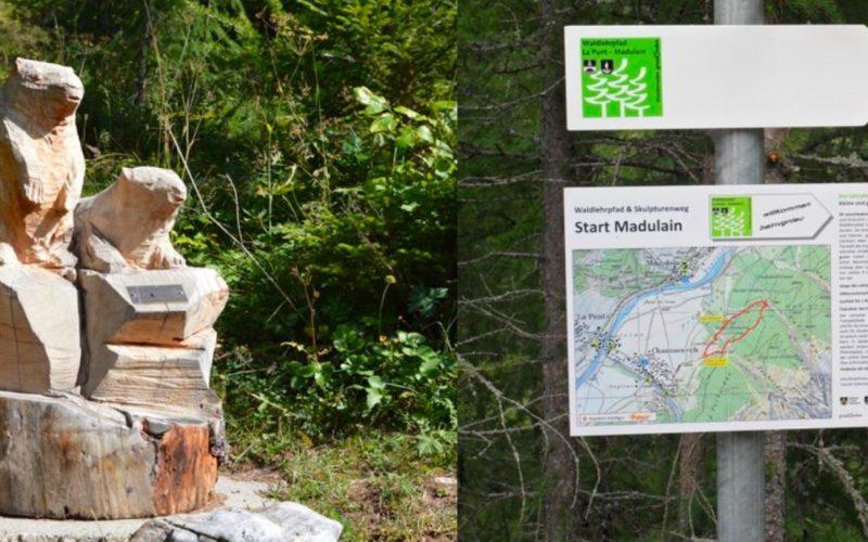 Sentiero naturalistico forestale-2021